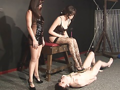 Mistress Effectuation With..