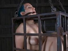 Clamped just about cutie..