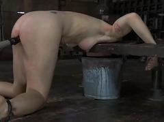 Slave acquires ass whipping..