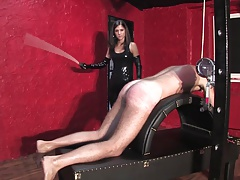 Young subfuscous mistress..