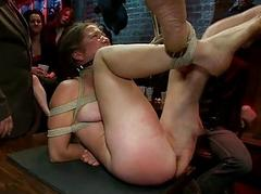 Appalling and pussy flogging..