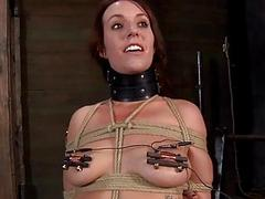 Gagged cutie around clamped..