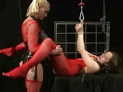 Mistress punishing hot..