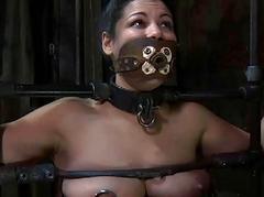 Hot titillating babe