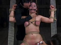 Beauty loves brutal pleasuring
