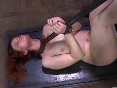 Hard toy for beautys anal..