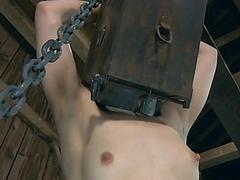 Wet newcomer disabuse of..