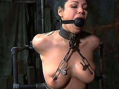 Tied up tits with respect to..