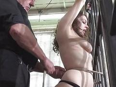 Whipped tits and rigid..